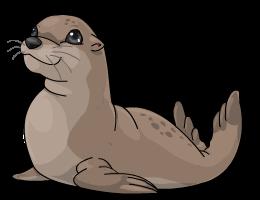 Australian_Fur_Seal