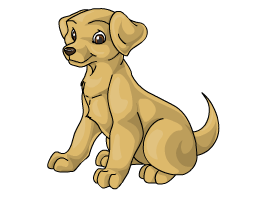 Labrador_retriever