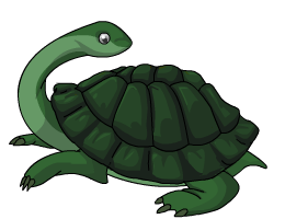 Snake_Necked_Turtle